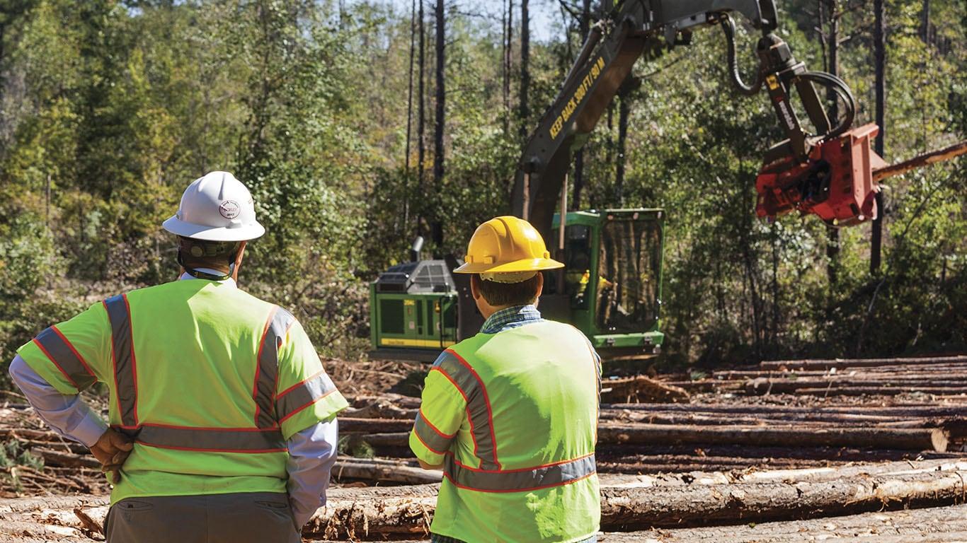 Garantia Florestal